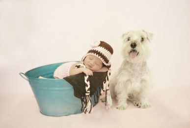 Newborn Photography | Pet Photography